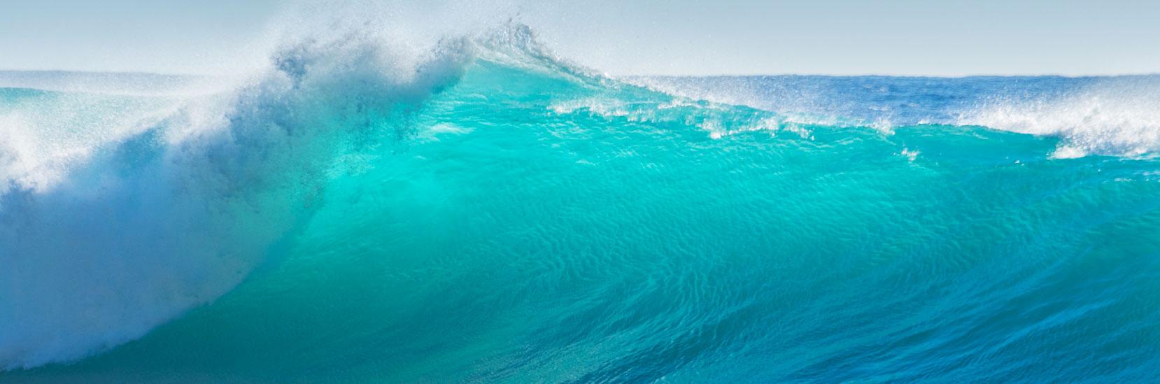 IIHA Banner Water